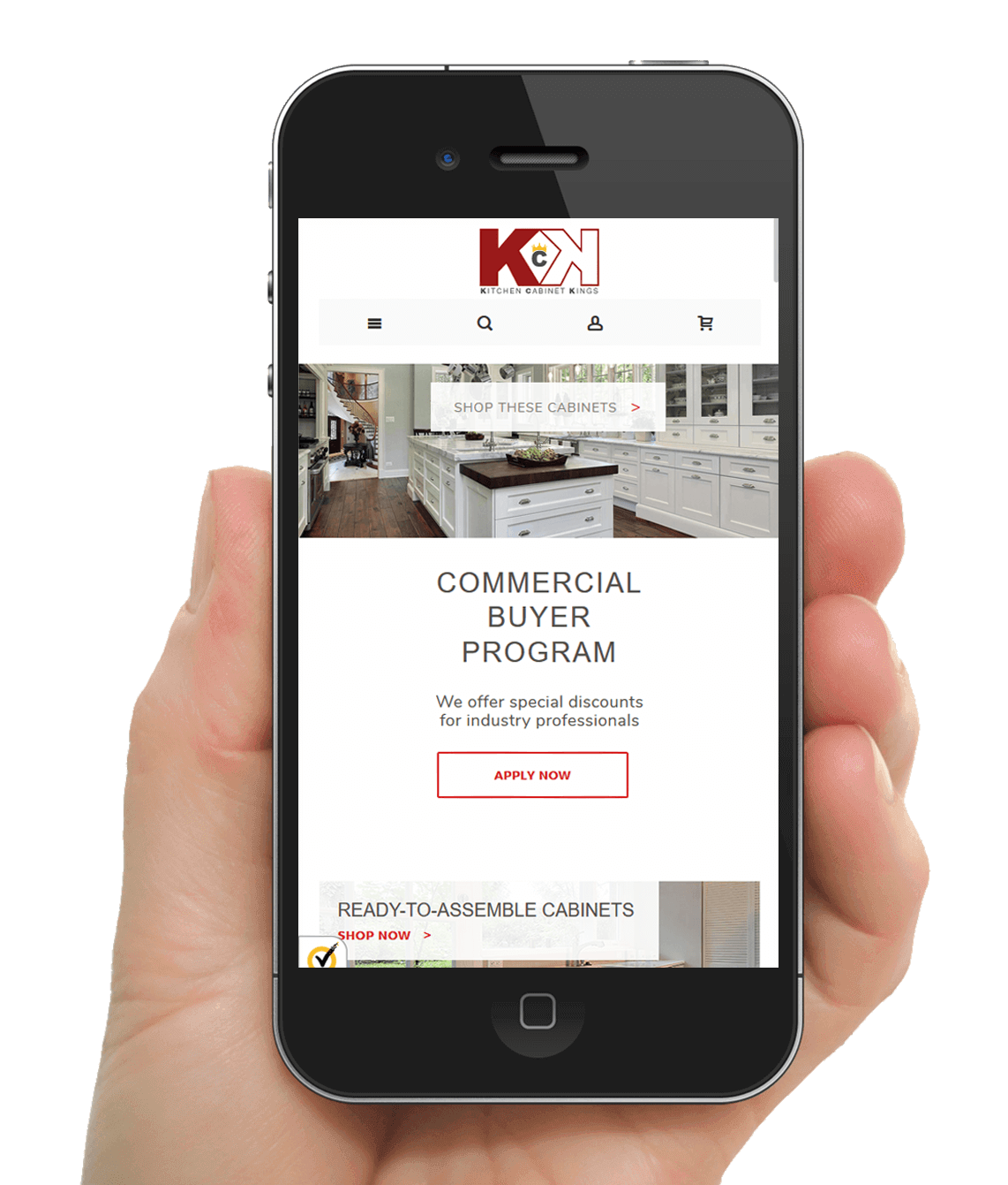 ECommerce Website Kitchen Cabinet Kings Clemson Web Design