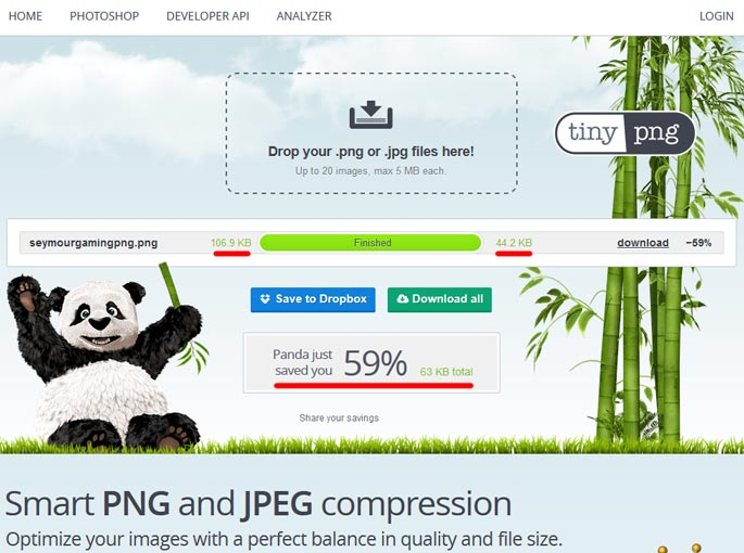 Tinypng WordPress Image Optimization